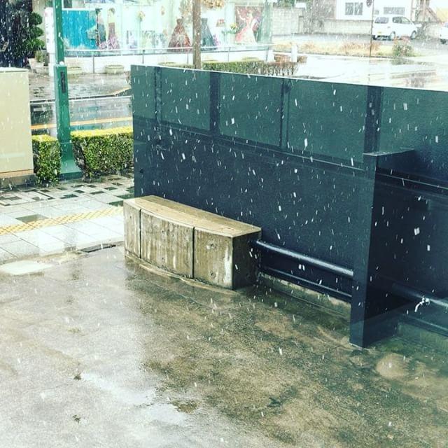 足利市内は雪が降ってます。